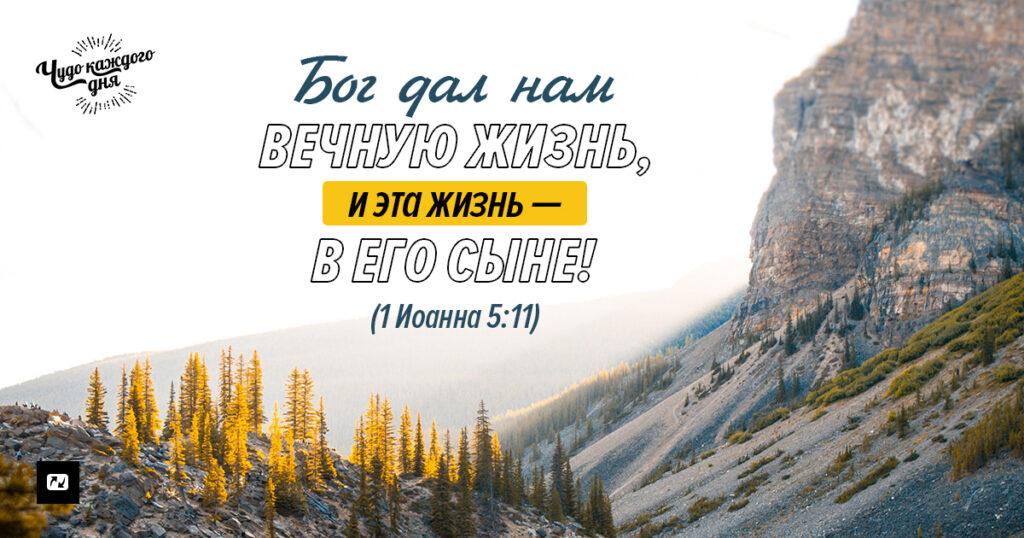 вечная жизнь